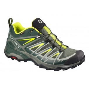 Salomon X Ultra 3 GTX Castor Grey/Darkest Spruce