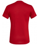 Salewa Camiseta Puez Melange Dry M/C Red Tango