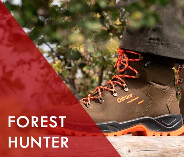 Sección forest